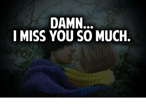Damn I Miss You So Much Meme On Meme