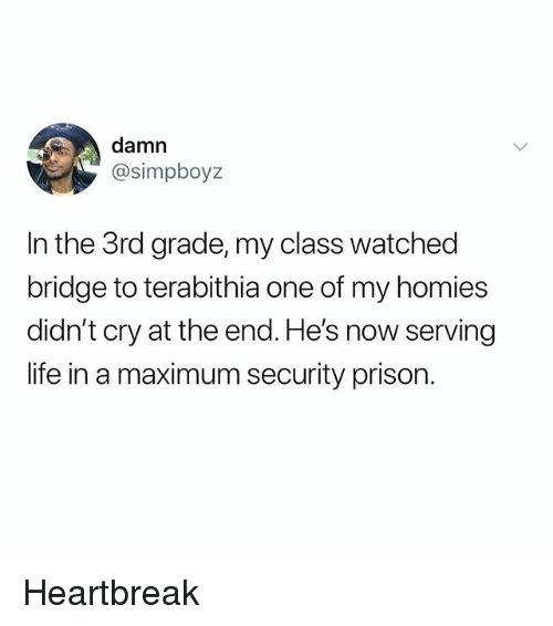 Life, Memes, and Prison: damn  @simpboyz  In the 3rd grade, my class watched  bridge to terabithia one of my homies  didn't cry at the end. He's now serving  life in a maximum security prison. Heartbreak