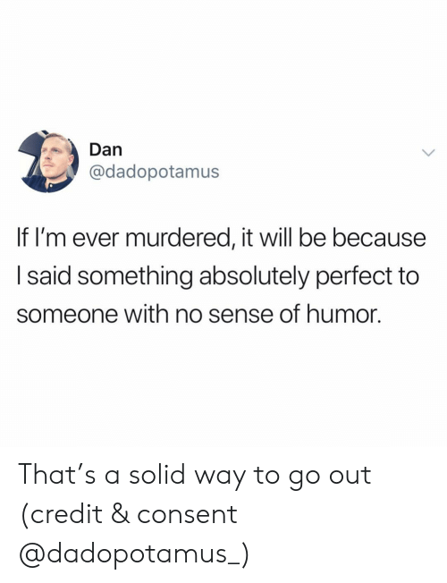 Funny, Will, and Solid: Dan  @dadopotamus  If I'm ever murdered, it will be because  I said something absolutely perfect to  someone with no sense of humor. That's a solid way to go out (credit & consent @dadopotamus_)