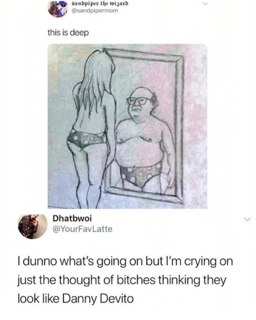 Crying, Thought, and Danny Devito: danbpiper the huizarb  @sandpipermom  this is deep  Dhatbwoi  @YourFavLatte  I dunno what's going on but I'm crying on  just the thought of bitches thinking they  look like Danny Devito