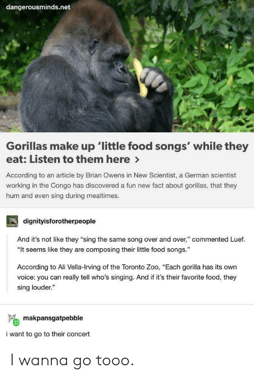 """Ali, Food, and Singing: dangerousminds.net  Gorillas make up 'little food songs' while they  eat: Listen to them here>  According to an article by Brian Owens in New Scientist, a German scientist  working in the Congo has discovered a fun new fact about gorillas, that they  hum and even sing during mealtimes  dignityisforotherpeople  And it's not like they """"sing the same song over and over,"""" commented Luef.  """"It seems like they are composing their little food songs.  According to Ali Vella-Irving of the Toronto Zoo, """"Each gorilla has its own  voice: you can really tell who's singing. And if it's their favorite food, they  sing louder.""""  makpansgatpebble  i want to go to their concert I wanna go tooo."""