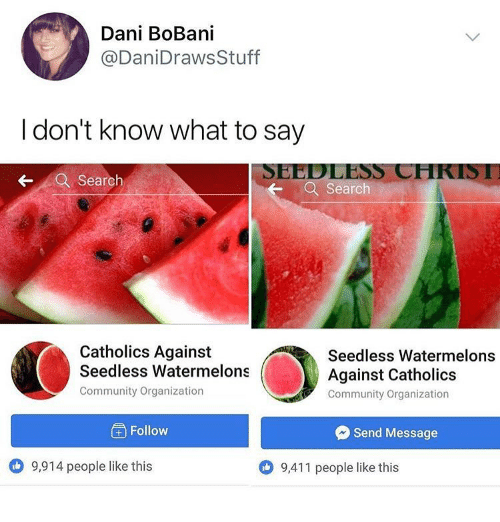 Calvin Johnson, Community, and Memes: Dani BoBani  @DaniDrawsStuff  I don't know what to say  SEEDLESS CHKISI  Search  Search  Catholics Against  Seedless Watermelons  Community Organization  Seedless Watermelons  Against Catholics  Community Organization  ) Follow  Send Message  9,914 people like this  9,411 people like this