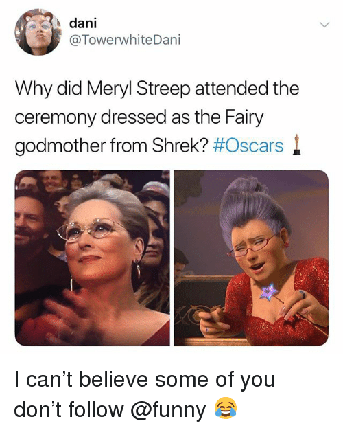Funny, Meme, and Oscars: dani  @TowerwhiteDani  Why did Meryl Streep attended the  ceremony dressed as the Fairy  godmother from Shrek? I can't believe some of you don't follow @funny 😂