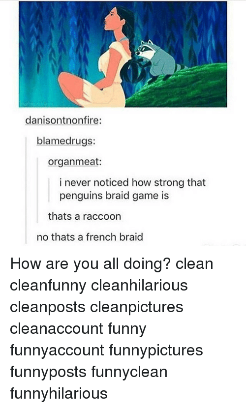 Funny, Memes, and Game: danisontnonfire:  blamed rugs:  organ meat:  i never noticed how strong that  penguins braid game is  thats a raccoon  no thats a french braid How are you all doing? clean cleanfunny cleanhilarious cleanposts cleanpictures cleanaccount funny funnyaccount funnypictures funnyposts funnyclean funnyhilarious