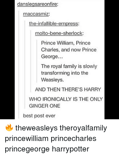 Family, Memes, and Prince: danslegsareonfire:  maccasmiz:  the-infallible-empress:  molto-bene-sherlock  Prince William, Prince  Charles, and now Prince  George..  The royal family is slowly  transforming into the  Weasleys.  AND THEN THERE'S HARRY  WHO IRONICALLY IS THE ONLY  GINGER ONE  best post ever 🔥 theweasleys theroyalfamily princewilliam princecharles princegeorge harrypotter