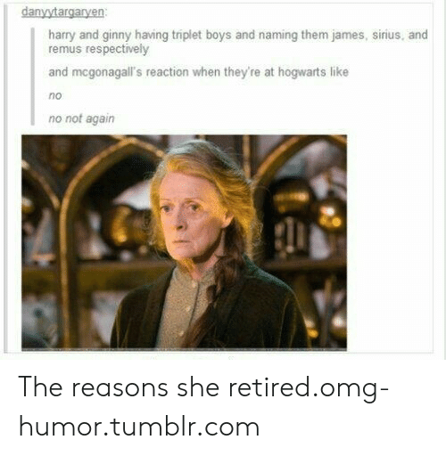 🔥 25+ Best Memes About Harry and Ginny   Harry and Ginny Memes