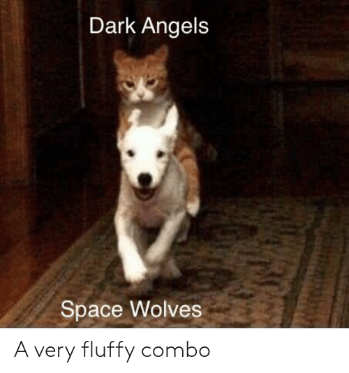 Angels, Space, and Wolves: Dark Angels  Space Wolves A very fluffy combo