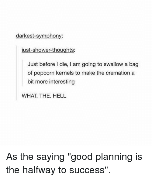 "Memes, Shower, and Shower Thoughts: darkest-symphony:  just-shower-thoughts:  Just before I die, I am going to swallow a bag  of popcorn kernels to make the cremation a  bit more interesting  WHAT. THE. HELL As the saying ""good planning is the halfway to success""."
