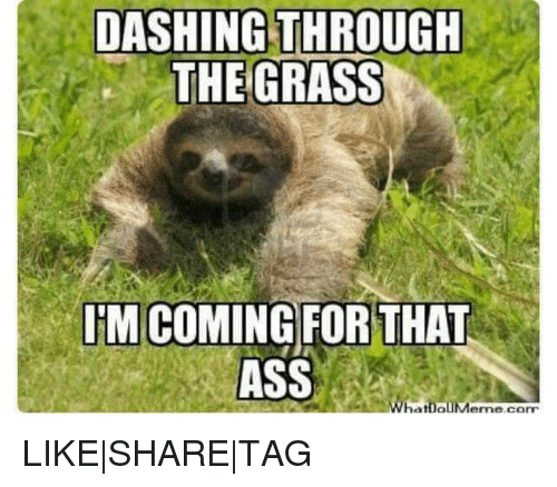 Sexual harassment sloth meme dirty