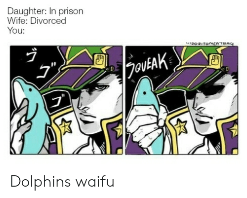 Prison, Dolphins, and Wife: Daughter: In prison  Wife: Divorced  You:  DORITOMEATBAG  |2outAK Dolphins waifu