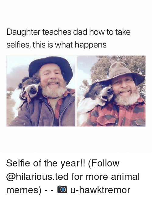 Dad, Funny, and Memes: Daughter teaches dad how to take  selfies, this is what happens Selfie of the year!! (Follow @hilarious.ted for more animal memes) - - 📷 u-hawktremor