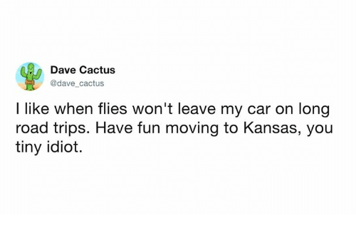 Dank, Idiot, and 🤖: Dave Cactus  @dave cactus  I like when flies won't leave my car on long  road trips. Have fun moving to Kansas, you  tiny idiot.