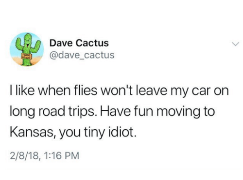 Idiot, Fun, and Car: Dave Cactus  @dave cactus  I like when flies won't leave my car on  long road trips. Have fun moving to  Kansas, you tiny idiot.  2/8/18, 1:16 PM
