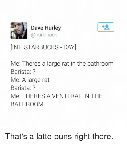 Bathroom Puns dave hurley dint starbucks dayi me theres a large rat in the