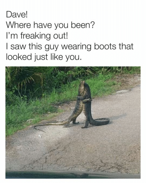 Dank, Saw, and Boots: Dave!  Where have you been?  I'm freaking out!  I saw this guy wearing boots that  looked just like you.
