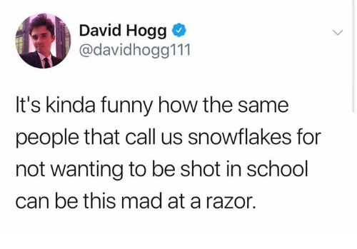 Dank, Funny, and School: David Hogg o  @davidhogg111  It's kinda funny how the same  people that call us snowflakes for  not wanting to be shot in school  can be this mad at a razor.