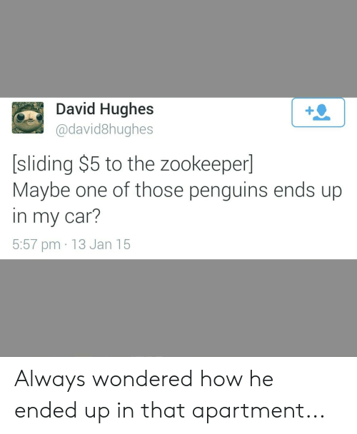 Penguins, How, and Car: David Hughes  @david8hughes  [sliding $5 to the zookeeper]  Maybe one of those penguins ends up  in my car?  5:57 pm 13 Jan 15 Always wondered how he ended up in that apartment...