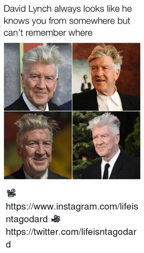 Instagram, Memes, and Twitter: David Lynch always looks like he  knows you from somewhere but  can't remember where 📽 https://www.instagram.com/lifeisntagodard  🎥 https://twitter.com/lifeisntagodard