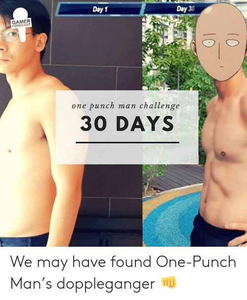 Day 1 Day 30 Gamer Forecast One Punch Man Challenge 30 Days We May Have Found One Punch Man S Doppleganger One Punch Man Meme On Me Me