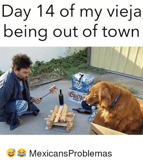 Memes, 🤖, and Day: Day 14 of my vieja  beina out of town  BU 😅😂 MexicansProblemas