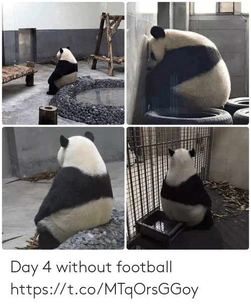 Football, Memes, and 🤖: Day 4 without football https://t.co/MTqOrsGGoy