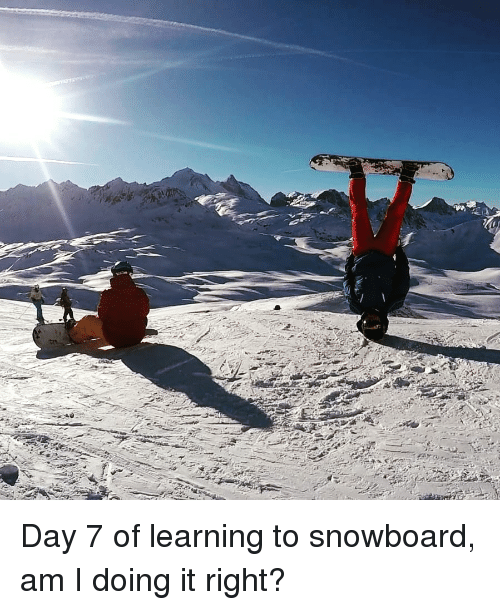 Snowboard And Snowboard Meme On Meme