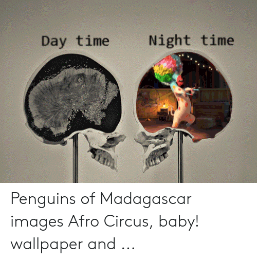 Day Time Night Time Penguins of Madagascar Images Afro