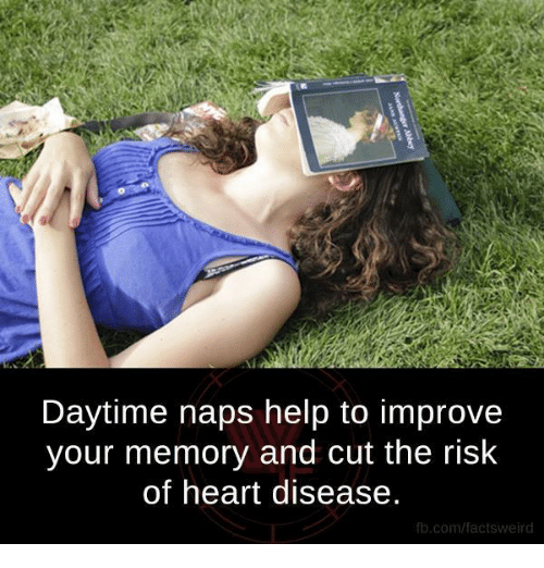 Memes, fb.com, and Heart: Daytime naps help to improve  your memory and cut the risk  of heart disease.  fb.com/factsweird