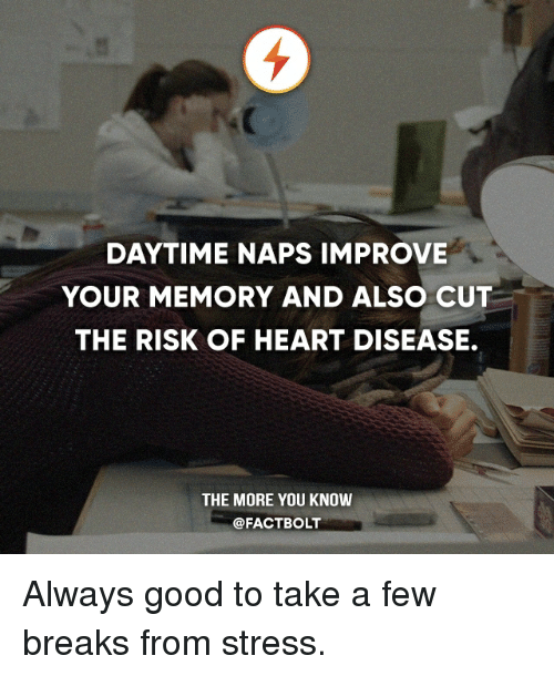 DAYTIME NAPS IMPROVE YOUR MEMORY AND ALSO CUT THE RISK OF