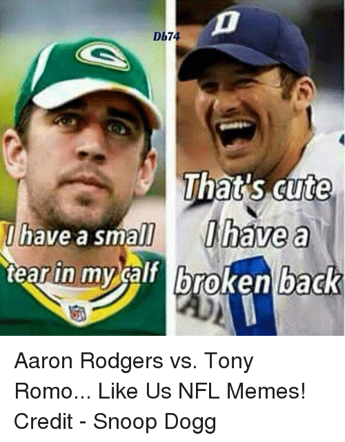 db74 thats cute i have a small i have a 19179469 ✅ 25 best memes about aaron rodgers aaron rodgers memes