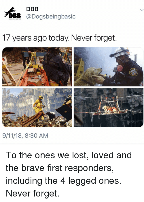 9/11, Dogs, and Memes: DBB  DBB @Dogsbeingbasic  DOGS BEING BASIC  1/ years ago today. Never forget  9/11/18, 8:30 AM To the ones we lost, loved and the brave first responders, including the 4 legged ones. Never forget.