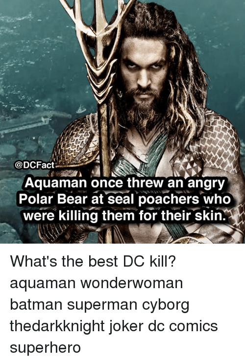 Batman, Joker, and Memes: @DCFact:  Aquaman once threw an angry  Polar Bear at seal poachers who  were killing them for their skin.  MC What's the best DC kill? aquaman wonderwoman batman superman cyborg thedarkknight joker dc comics superhero
