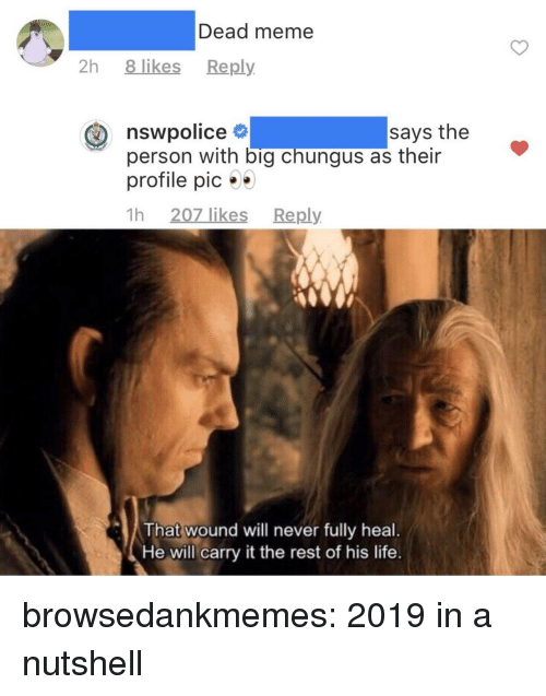 Life, Meme, and Tumblr: Dead meme  2h 8 likes Reply  nswpolice  person with big chungus as their  profile pic  1h 207 likes Reply  says the  That wound will never fully heal.  He will carry it the rest of his life. browsedankmemes:  2019 in a nutshell