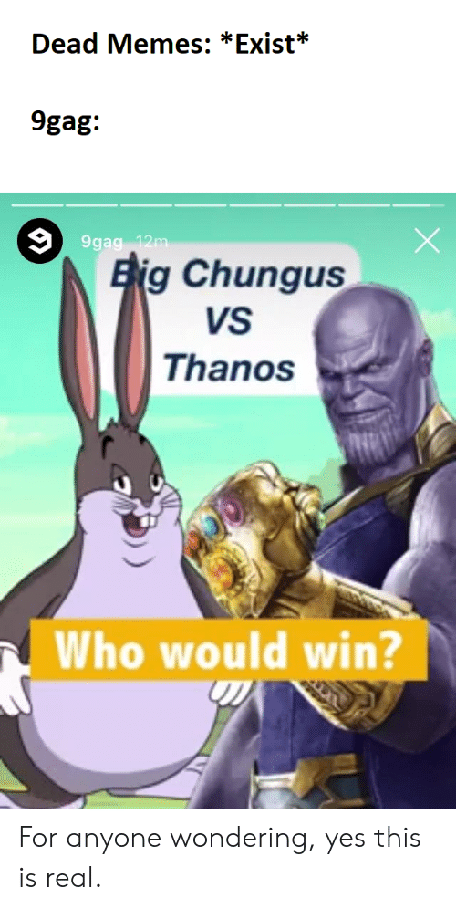 Dead Memes Exist 9gag Eig Chungus Vs Thanos Who Would Win For