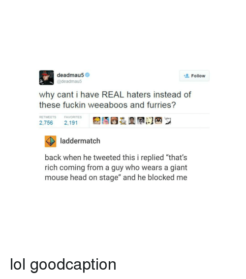 "Deadmau5, Giant, and Giants: deadmau5  Follow  @deadmau5  why cant i have REAL haters instead of  these fuckin weeaboos and furries?  RETWEETS FAVORITES  2,756  2,191  ladder match  back when he tweeted this i replied ""that's  rich coming from a guy who wears a giant  mouse head on stage"" and he blocked me lol goodcaption"