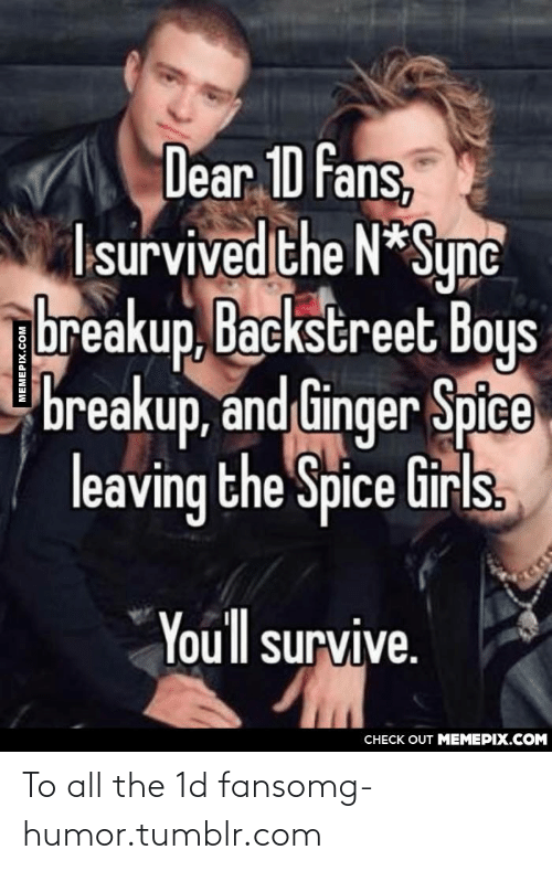 Girls, Omg, and Tumblr: Dear 1D fans,  Isurvived the N*Sync  breakup, Backstreet Boys  breakup, and Ginger Spice  leaving the Spice Girls,  Youll survive.  CHECK OUT MEMEPIX.COM  MEMEPIX.COM To all the 1d fansomg-humor.tumblr.com