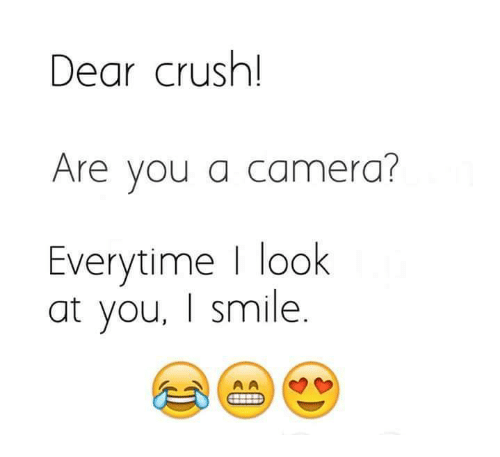 Crush, Memes, and Camera: Dear crush!  Are you a camera?  Everytime | look  at you, I smile.