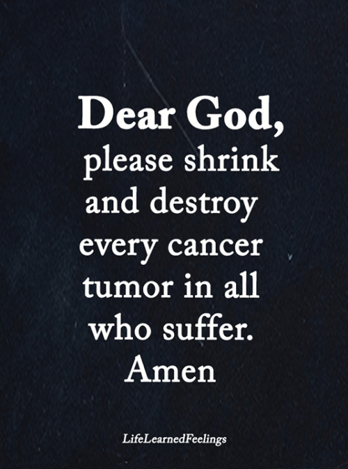 God, Memes, and Cancer: Dear God,  please shrink  and destroy  every cancer  tumor in all  who suffer.  Amen  LifeLearnedFeelings