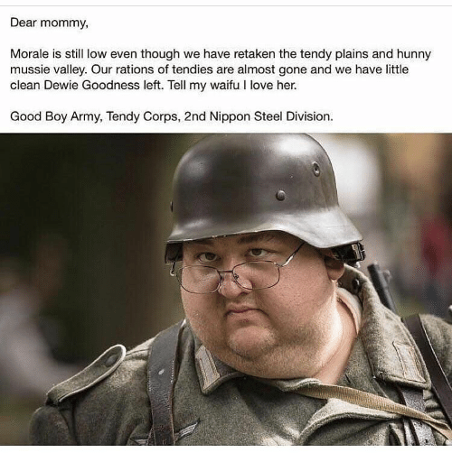 Love, Army, and Good: Dear mommy,  Morale is still low even though we have retaken the tendy plains and hunny  mussie valley. Our rations of tendies are almost gone and we have little  clean Dewie Goodness left. Tell my waifu I love her.  Good Boy Army, Tendy Corps, 2nd Nippon Steel Division.