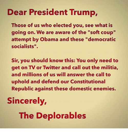 "Memes, Militia, and Obama: Dear President Trump,  Those of us who elected you, see what is  going on. We are aware of the ""soft coup""  attempt by Obama and these ""democratic  socialists"".  Sir, you should know this: You only need to  get on TV or Twitter and call out the militia,  and millions of us will answer the call to  uphold and defend our Constitutional  Republic against these domestic enemies.  Sincerely  The Deplorables"