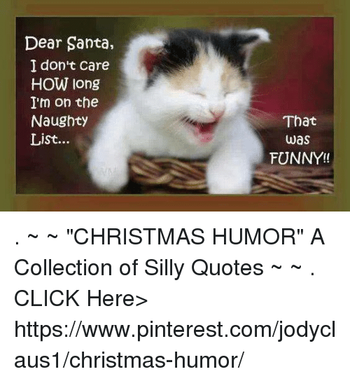 Christmas Humor Quotes.Dear Santa I Don T Care How Long I M On The Naughty List