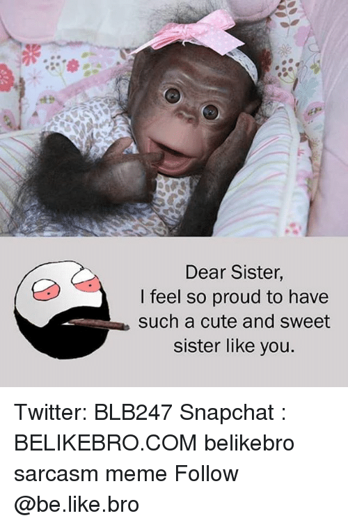 Be Like, Cute, and Meme: Dear Sister,  I feel so proud to have  such a cute and sweet  sister like you. Twitter: BLB247 Snapchat : BELIKEBRO.COM belikebro sarcasm meme Follow @be.like.bro