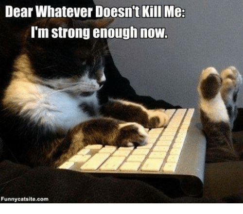 Dear Whatever Doesnt Kill Me Im Strong Enough Now Funnycatsitecom
