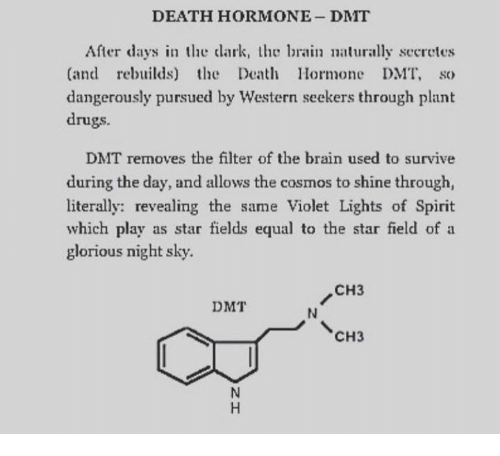 DEATH HORMONE DMT After Days in the Dark the Brain Naturally