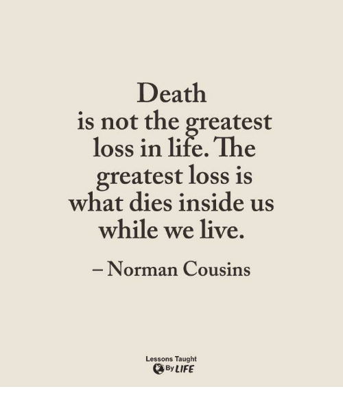 Genial Im 14 U0026 This Is Deep, Deaths, And Normans: Death Is Not The