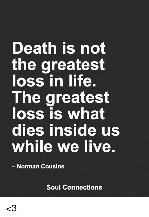 Life, Memes, And Death: Death Is Not The Greatest Loss In Life The