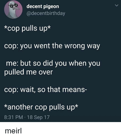 Irl, MeIRL, and Another: decent pigeon  @decentbirthday  *cop pulls up*  cop: you went the wrong way  me: but so did you when you  pulled me over  cop: wait, so that means-  *another cop pulls up*  8:31 PM 18 Sep 17