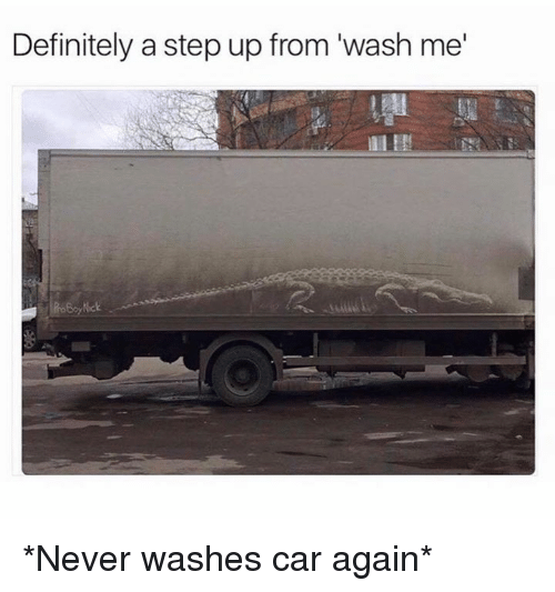 "Dank, Definitely, and Never: Definitely a step up from ""wash me *Never washes car again*"
