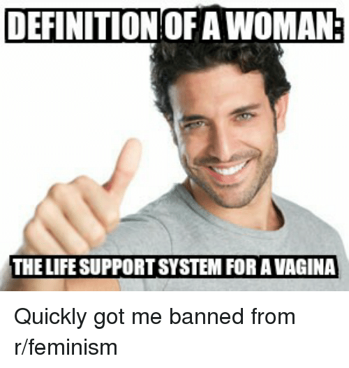 definition of a woman the life supportsystem for a vagina 2669021 search meme definition memes on me me,What Is The Definition Of Memes