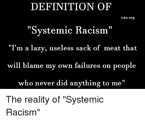 definition of systemic racism i m a lazy useless sack of meat that